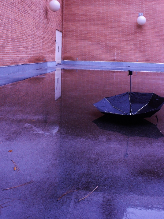 Umbrella Brick Wall 2.JPG