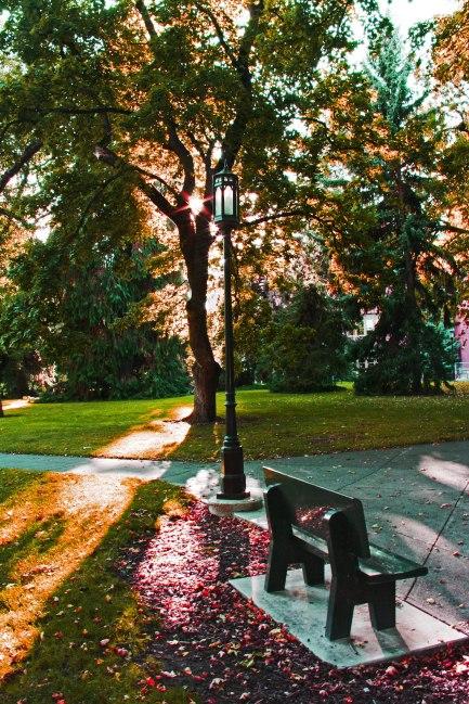 Campus 2.jpg